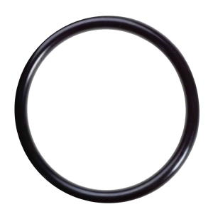 CP-KOR24, O-RING FOR KOOLERMAX MEMBRANE FILTER HOUSING